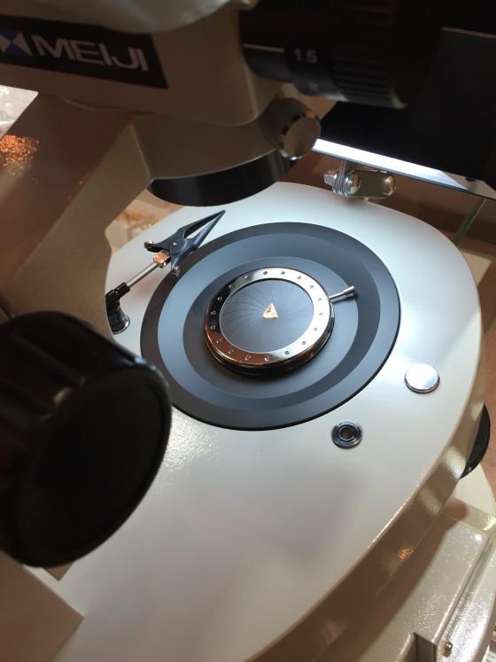 顕微鏡チェック